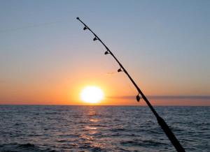 MSFDA Fishing Outing @ Chesapeake Beach Resort   Chesapeake Beach   Maryland   United States